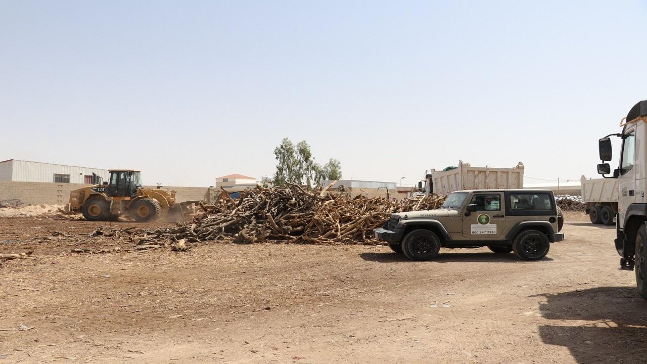 استرداد 1665م3 من الحطب المحلي وإغلاق 4 أحواش مخالفة في القصيم