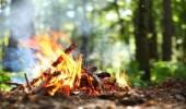 3 آلاف ريال عقوبةإشعال النار في الغابات والمتنزهات بالأماكن غير المخصصة