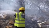 بالفيديو .. لقطات توثق مكافحة الدفاع المدني لحريق منتزه المسقي بعسير