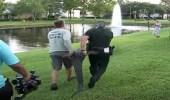 بالصور.. تمساح يهاجم امرأة ويصيبها بجروح خطيرة