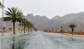 الحصيني: أمطار متفاوتة على عدة مناطق