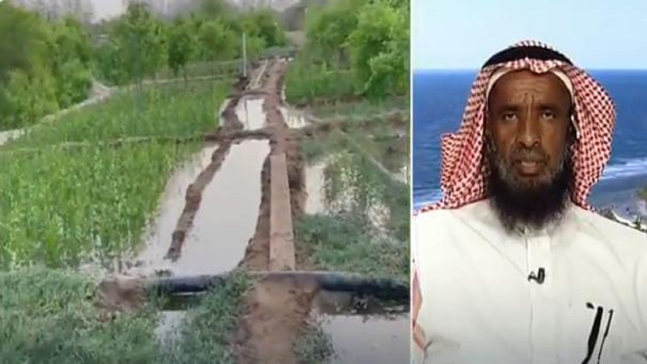 بالفيديو.. مواطن يحول مزرعته الجافة إلى واحة خضراء بمياه البحر المالحة