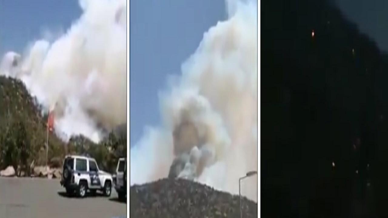 بالفيديو.. الدفاع المدني يسيطر على مساحات كبيرة من حريق منتزه الشعف
