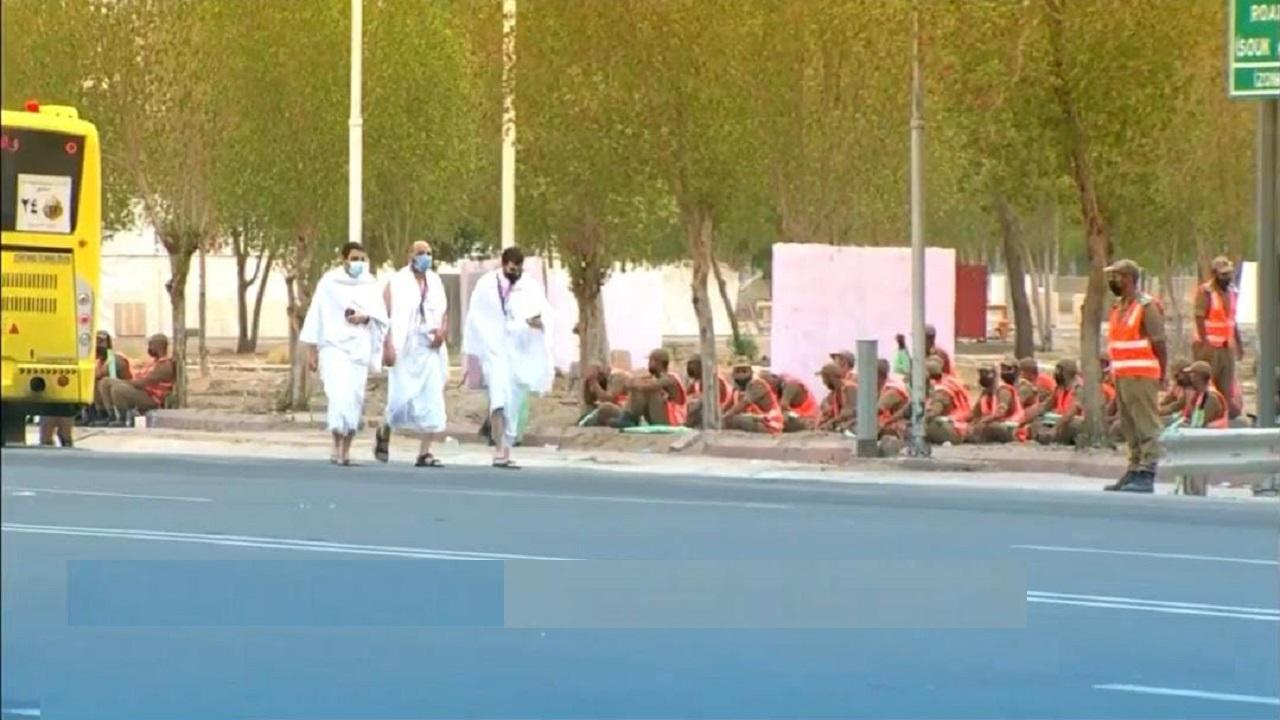بالفيديو.. استمرار توافد الحجاج إلى صعيد عرفات لأداء ركن الحج الأعظم
