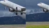 فيديو.. طيار إيرباص يحاول تجنب الاصطدام بسرب من طيور النورس