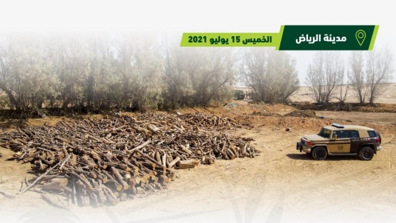 ضبط 3 مخالفين بحوزتهم 312 مترًا من الحطب المحلي المعد للبيع جنوب الرياض