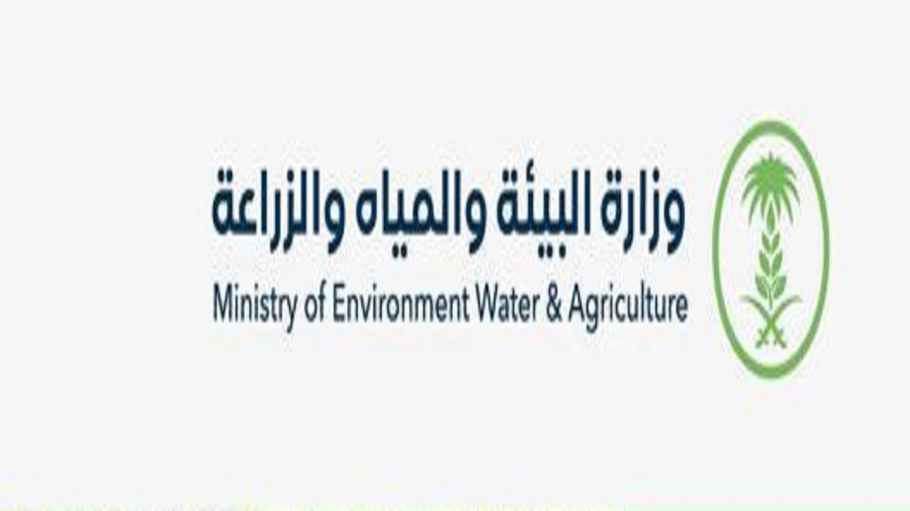 """""""البيئة"""": بدء تطبيق اللائحة التنفيذية لحماية الأوساط المائية من التلوث في جميع المناطق"""