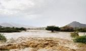 وفاة شقيقين صعقًا خلال سيول نجران