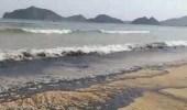 بالفيديو ..الحكومة اليمنية تتخذ إجراءات لاحتواء التلوث النفطي بعد غرق سفينة