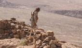 بالفيديو.. نساء منطقة الزاهر باليمن يطلقن الزغاريد احتفالا بطرد مليشيا الحوثي