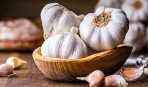 الثوم يقوي المناعة ويساعد في خفض الكوليسترول