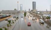 الأرصاد : حالة عدم الاستقرار في الأحوال الجوية ممتدة لآخر الأسبوع القادم