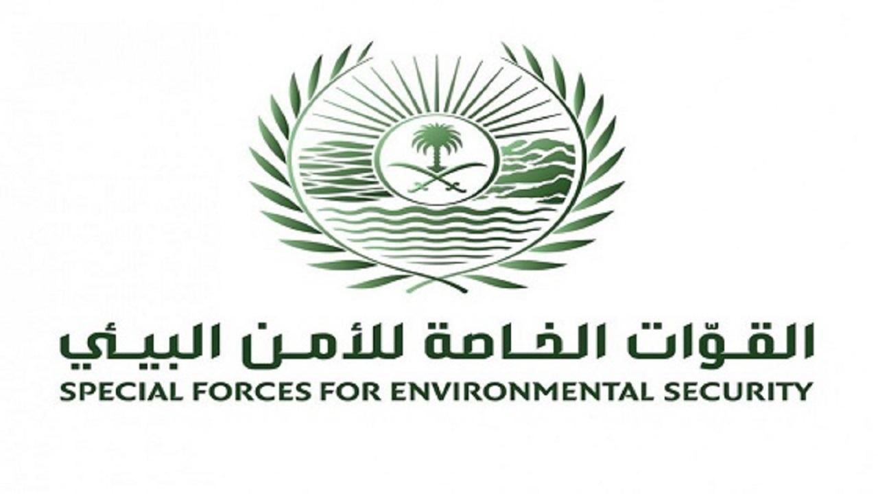 القوات الخاصة للأمن البيئي توقف (25) مخالفًا لنظام البيئة لقيامهم بإشعال النار في غير الأماكن المخصصة لها