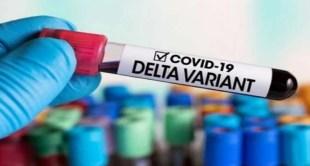 """دراسة حديثة تتوصل لسبب انتشار سلالة """"دلتا"""" بشكل أسرع من غيرها"""