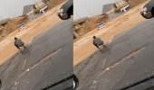 بالفيديو.. سائقون يجازفون بعبور السيول في نجران