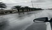 شاهد.. لحظة هطول أمطار غزيرة مصحوبة برياح قوية في جنوب بيشة
