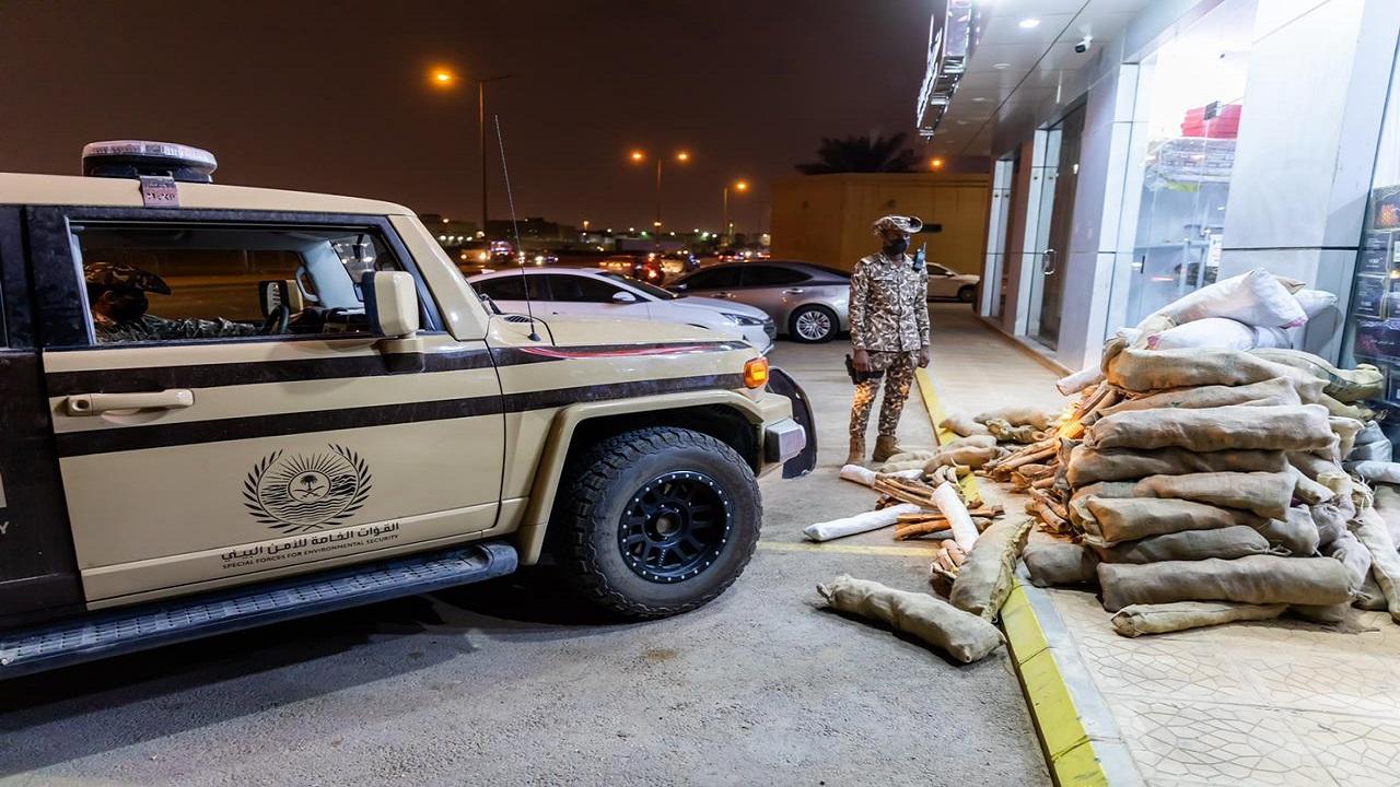 الأمن البيئي يضبط مخالفين لنظام البيئة لبيعهم حطبًا محليًا لأغراض تجارية