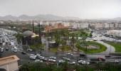 أمطار رعدية على المدينة المنورة تستمر حتى المساء