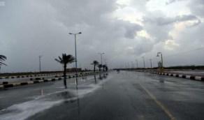 بالفيديو.. الأرصاد: استمرار هطول الأمطار لمدة 4 أيام