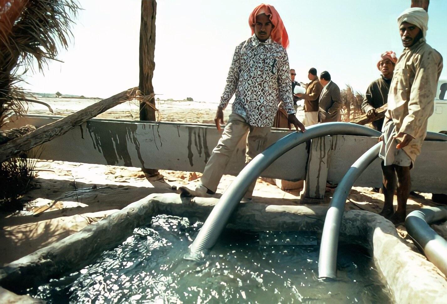 سقي المزارع في محافظة الاحساء في السبعينيات الميلادية