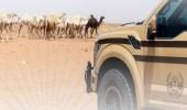 ضبط مخالفَين لنظام البيئة لبيعهم كائنات فطرية برية في الرياض