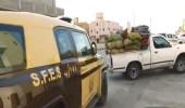 بالفيديو.. ضبط 116 مخالفًا لنظام البيئة في عدد من المناطق