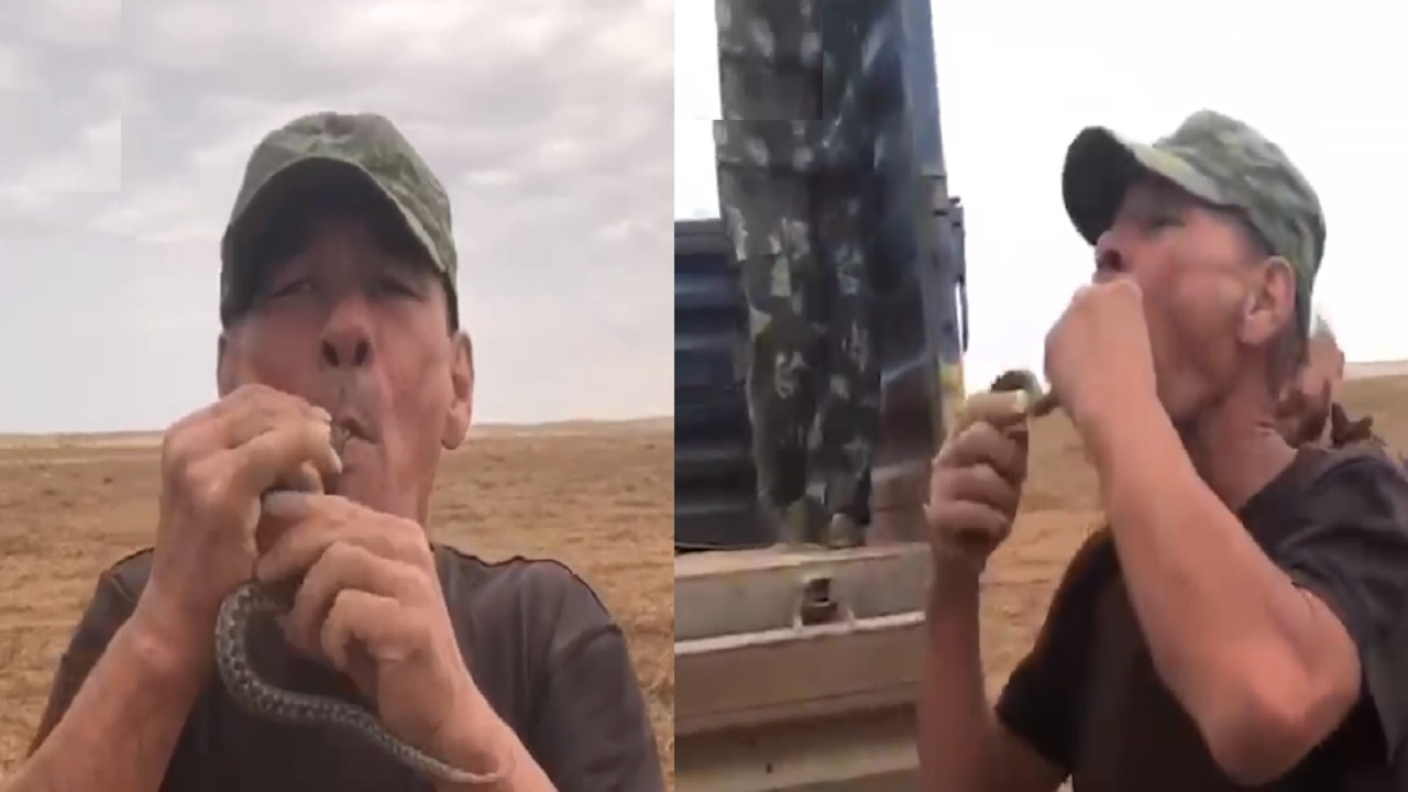 بالفيديو.. وفاة خمسيني حاول ابتلاع أفعى سامة