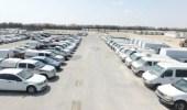 إقامة مزاد علني لبيع السيارات في جمرك الخفجي