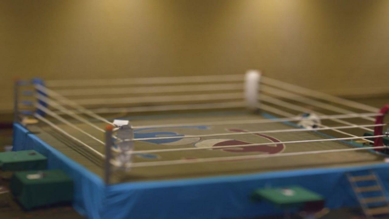 انطلاق بطولة المملكة للملاكمة في الرياض