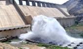 وزارة البيئة: فتح بوابات سد وادي بيش على مدى شهر (فيديو)
