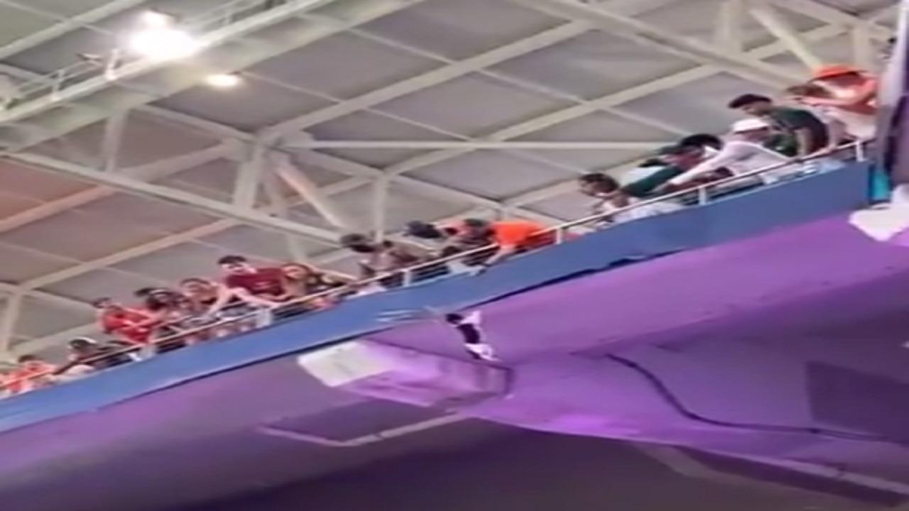 شاهد.. رجل يتمكن من الإمساك بقطة سقطت من مكان مرتفع