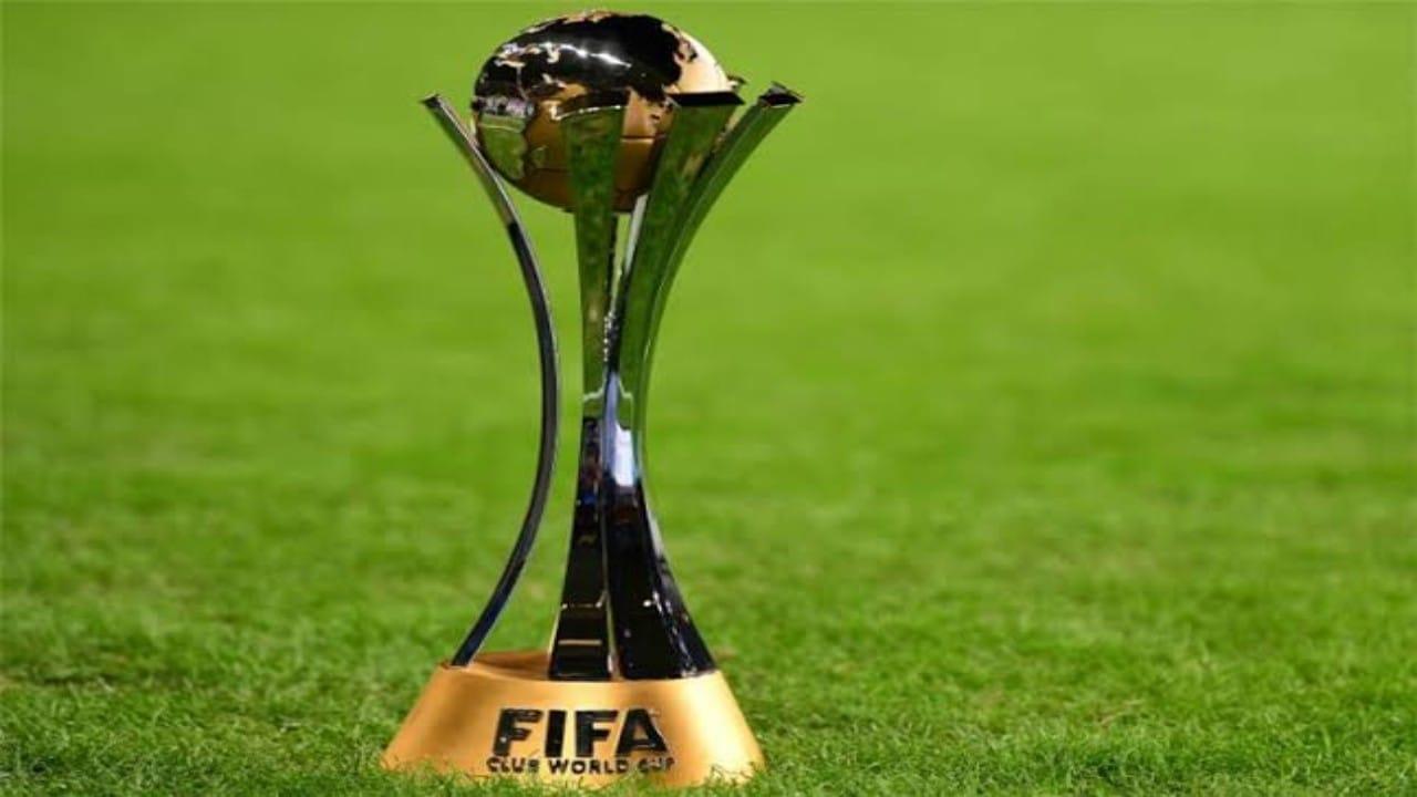 جنوب إفريقيا ترغب فياستضافة كأس العالم بعد انسحاب اليابان