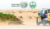 القوات الخاصة للأمن البيئي تضبط أكثر من (3725) مخالفة بيئية