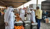 حملة الخامسة فجرًا تضبط عمالة مخالفة في سوق خضار الشرقية (صور)