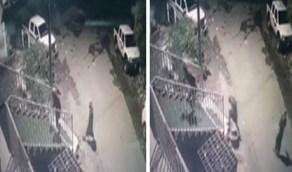 بالفيديو .. لصوص يسرقون محل تموينات في محافظة الداير بني مالك