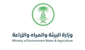 طرح 4 مبادرات لحماية البيئة ضمن مبادرة الشرق الأوسط الأخضر