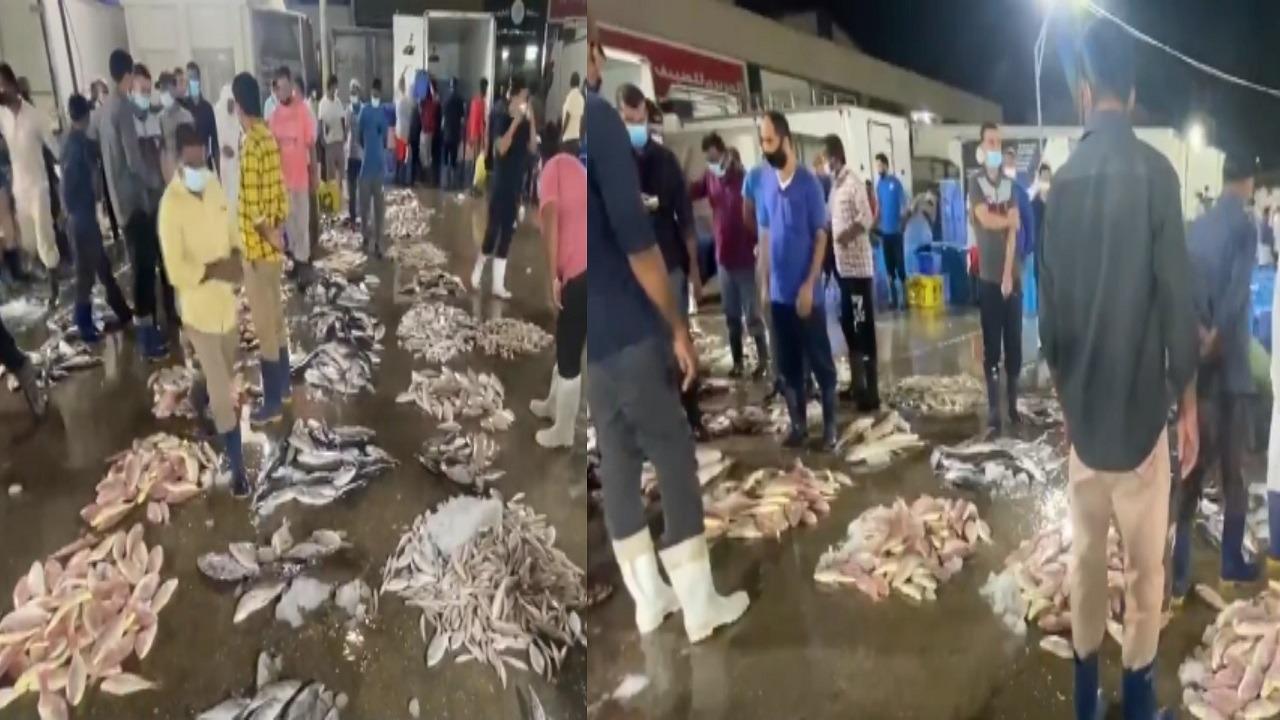 مشاهد تنذر بكارثة صحية في سوق السمك بالقطيف