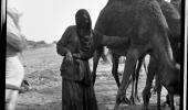 صورة في قمة الجمال لامراة بجوار الإبل قبل 85 عام