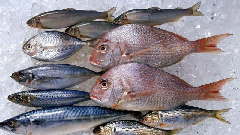 أطعمة تسهم في إطالة العمر وأبرزها السمك