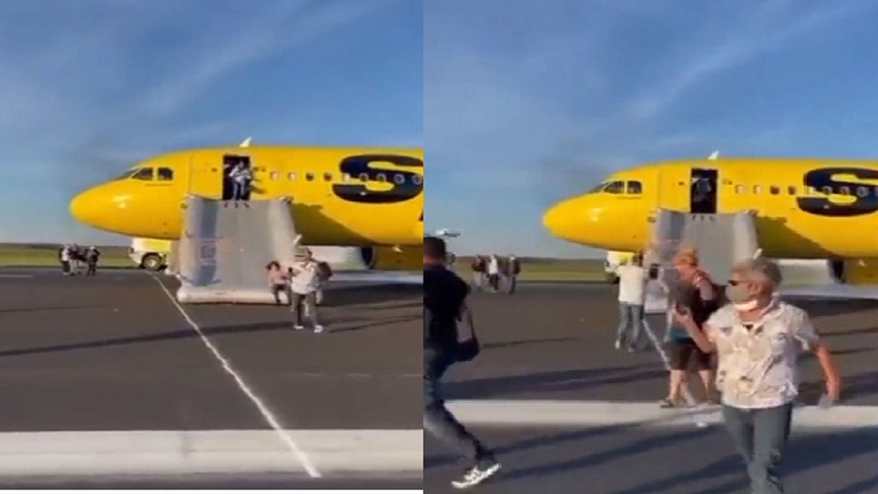 بالفيديو.. إخلاء طائرة بعد دخول طير إلى المحرك
