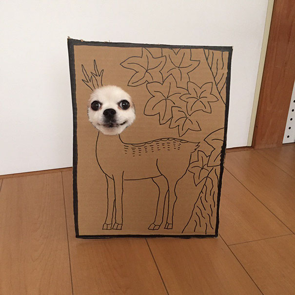 dog-costume-cardboard-cutouts-myouonnin-39-580f5440526b9__605