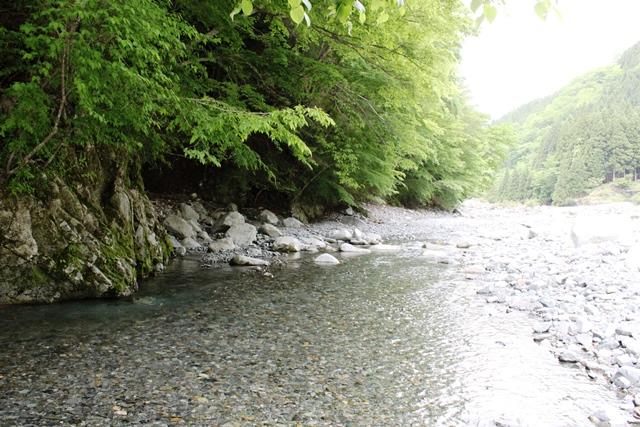 玄倉 人口の川에 대한 이미지 검색결과
