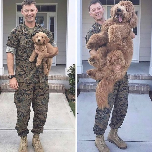 Before Deployment... After Deployment