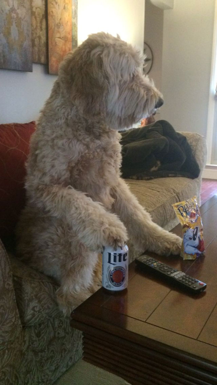 Max Is Ready For Super Bowl