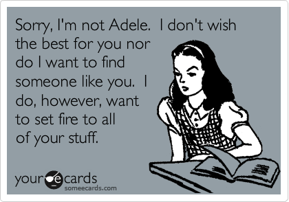 someecards.com - Sorry, I'm not Adele. I don't wish the best for you nor do I want to find someone like you. I do, however, want to set fire to all of your stuff.