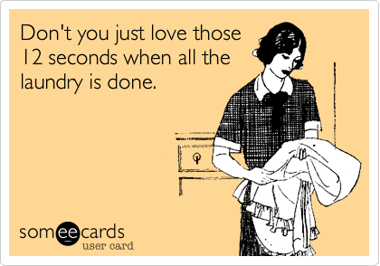 Funny Somewhat Topical Ecard: Don't you just love those 12 seconds when all the laundry is done.