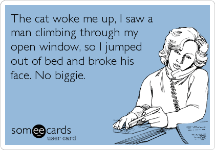 someecards.com - The cat woke me up, I saw a man climbing through my open window, so I jumped out of bed and broke his face. No biggie.