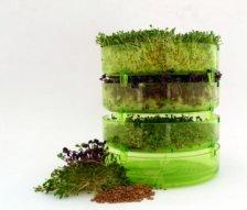 Germogliatore Geo in Plastica