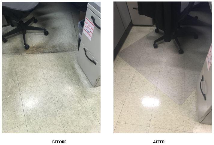 clean team case study strip and wax floors
