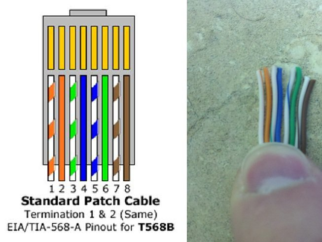 Cat6 Patch Cable Wiring Diagram: cat 6 cable wiring diagram at negarled.com